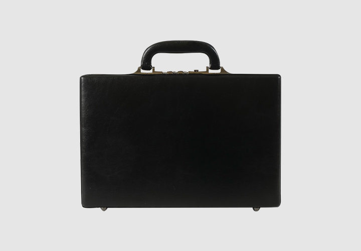 vidy-sumok-diplomat-3476978