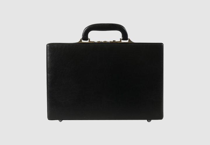 vidy-sumok-diplomat-6368675