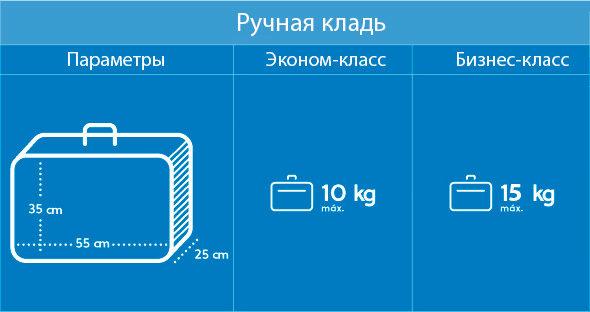 ruchnaya-klad-v-samolete-razmery-i-ves-aeroflot-3496415